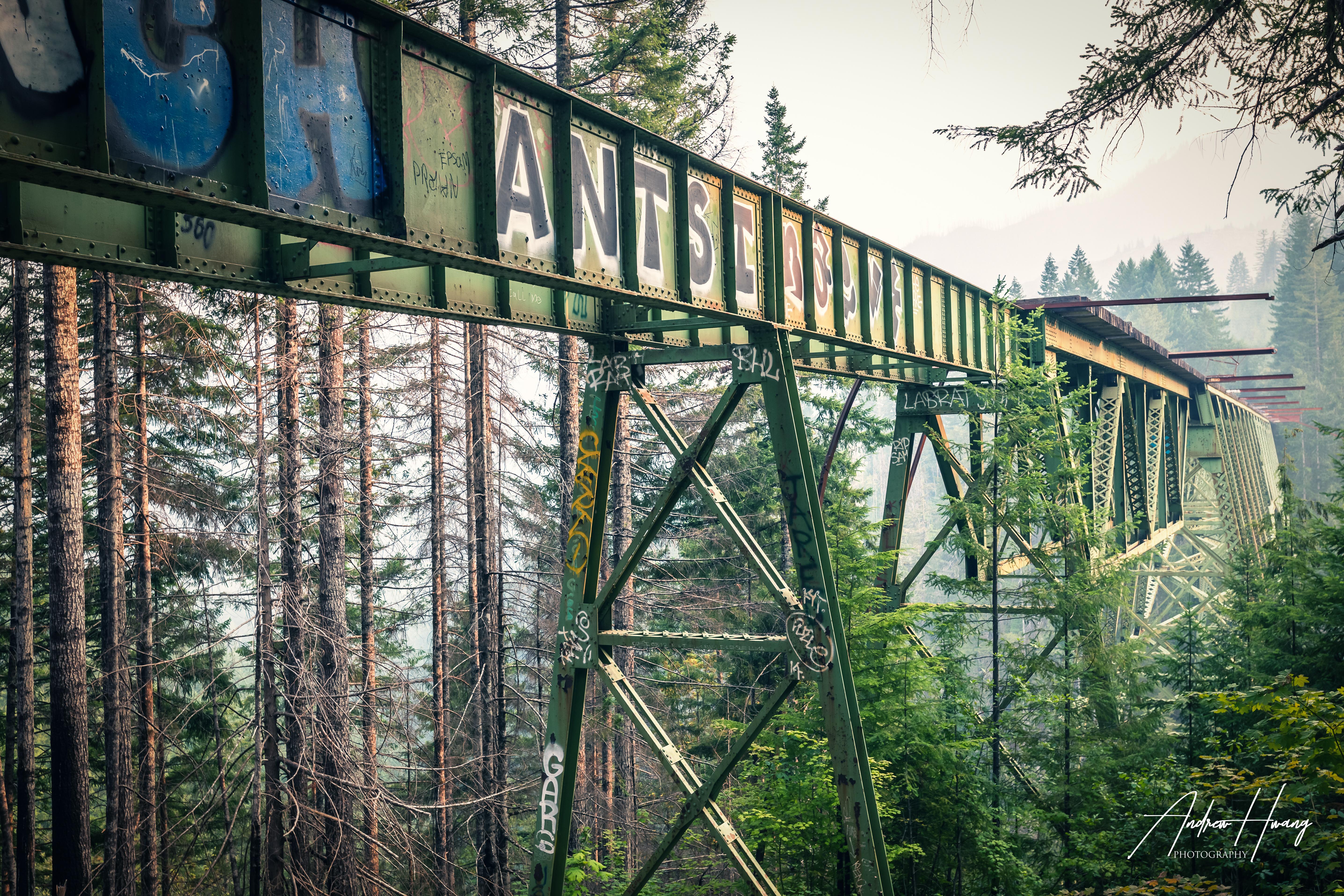 Shelton Vance Creek Bridge 4