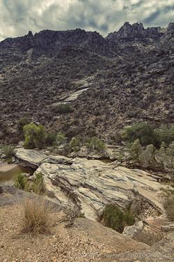 Sabino Canyon 5