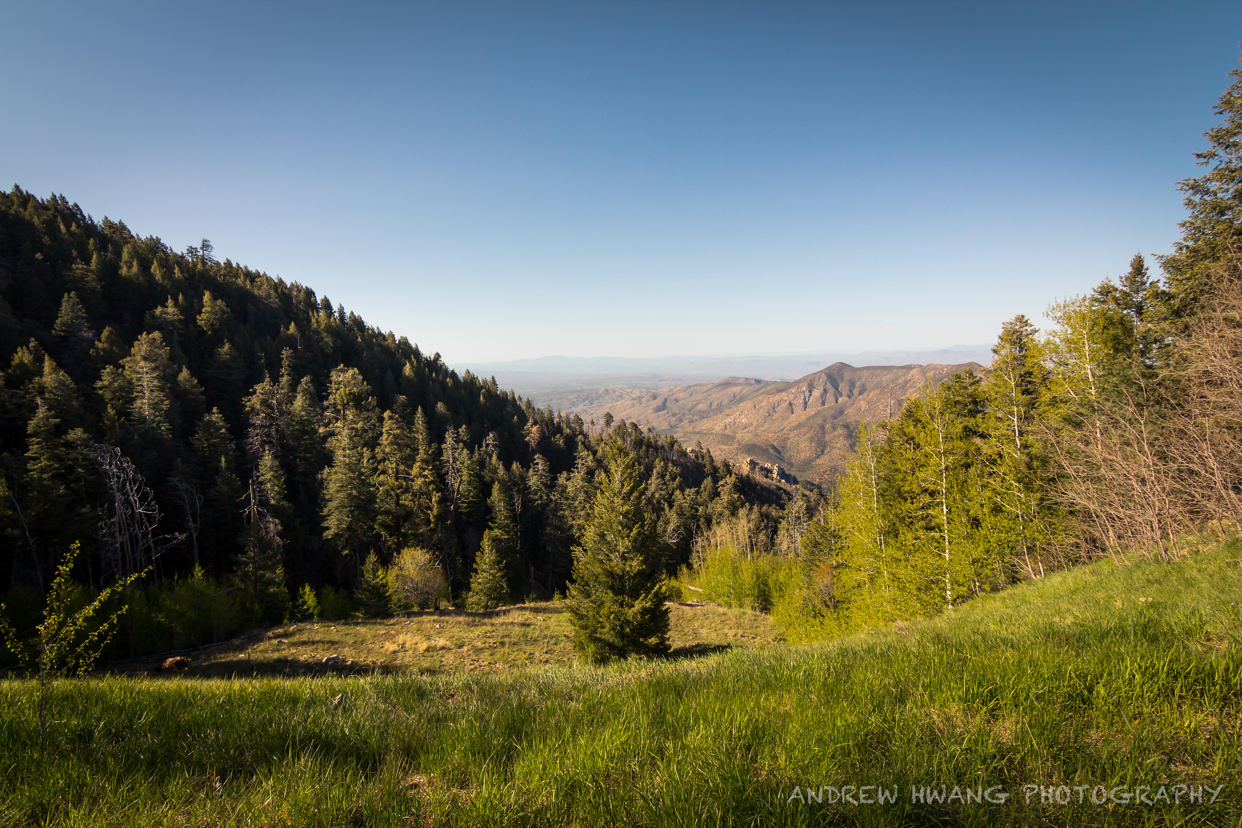 Mt Lemmon Peak