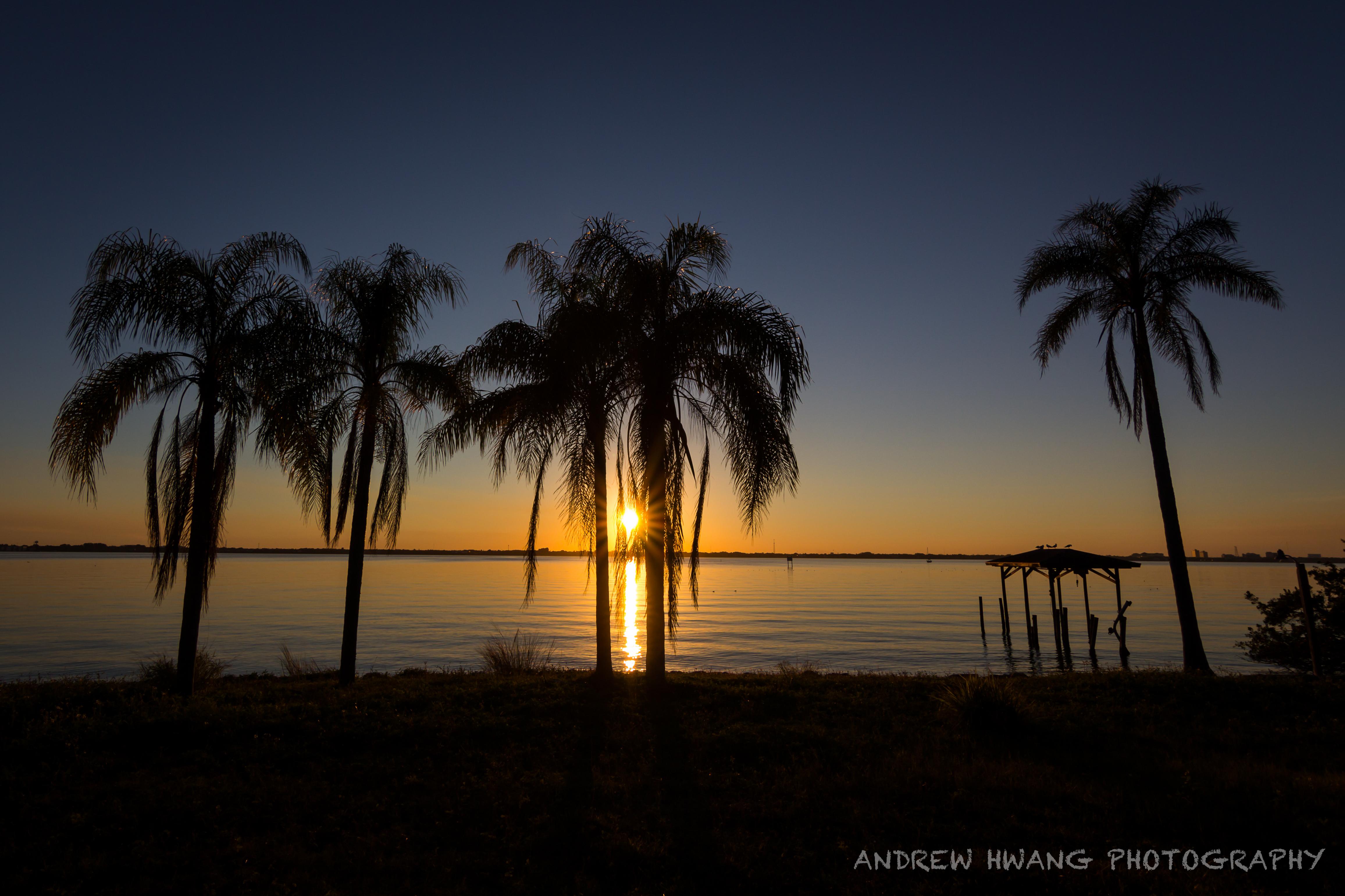 Melbourne Sunrise Ocean Front