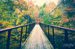 Hidden Valley Preserve Thoreau Bridge