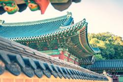 Changgyeonggung Palace Perspective