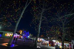 Hershey Park Christmas Lights