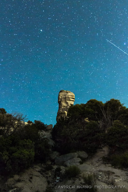 Mt Lemmon Star Trail