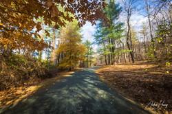 Monticello Trail