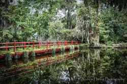 Audubon Swamp Bridge_2