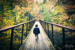 Walk the Hidden Valley Preserve Thoreau