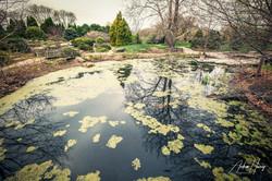 Olbrich Botanical Gardens - Thai Garden.