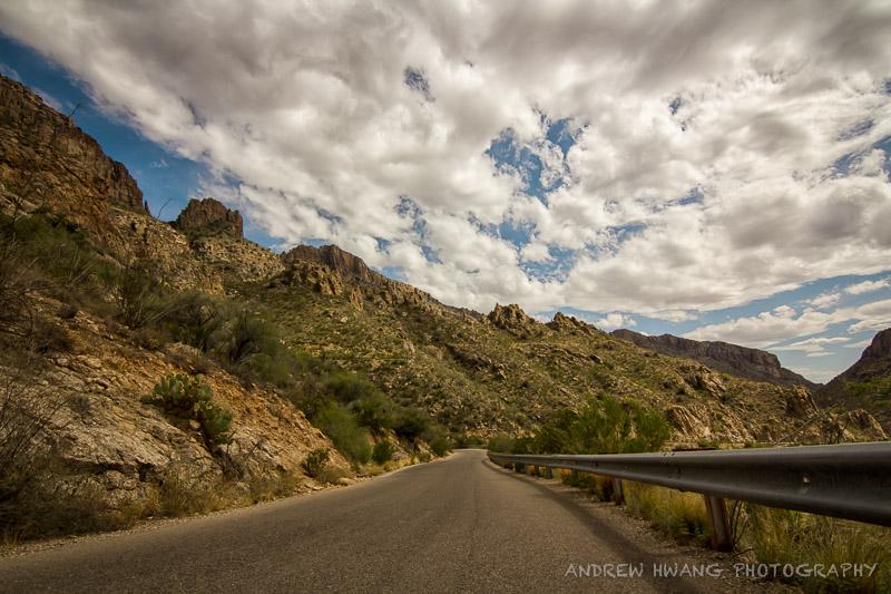 Sabino Canyon 3