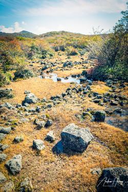Hallasan Mountain Top 25MB