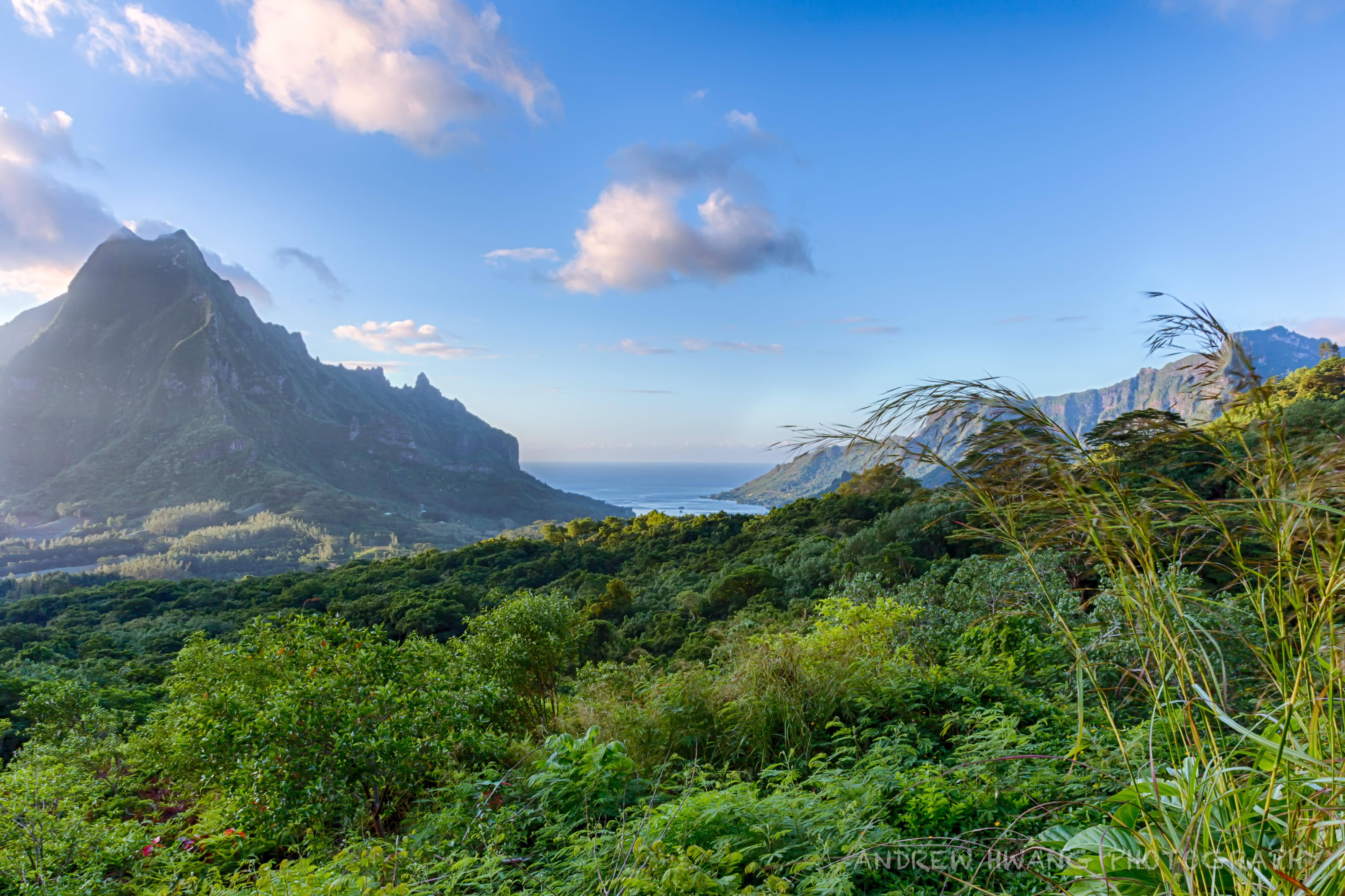 Belvedere Lookout Peak 2