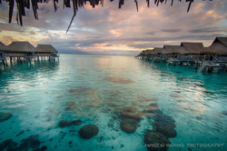 Moorea Golden Hour