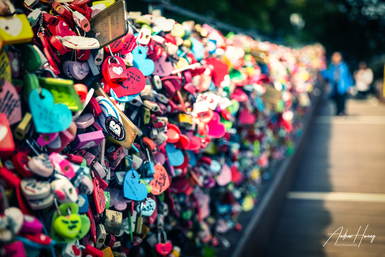 Namsan Mountain Locks of Love