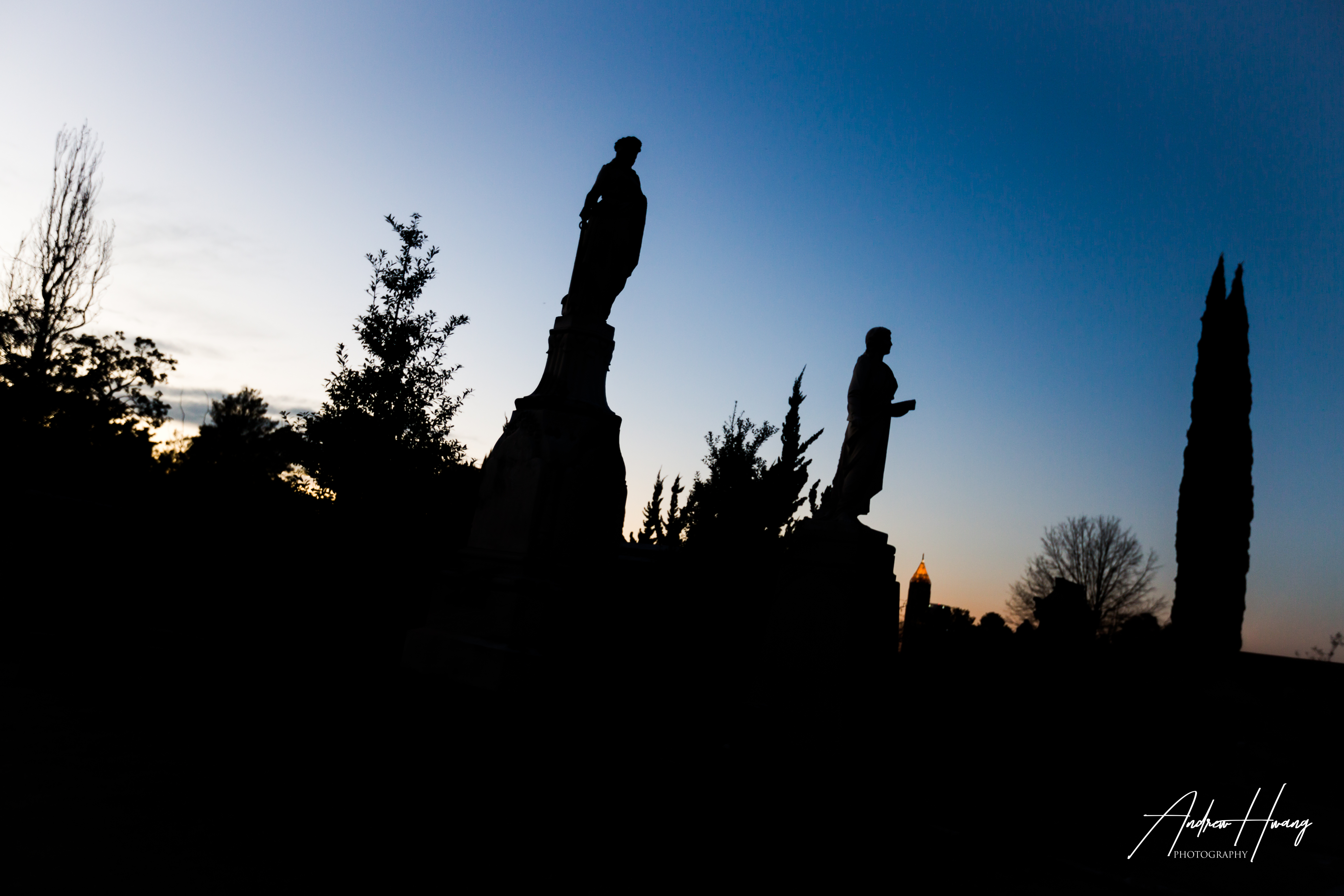 Oakland Cemetary Silhouette