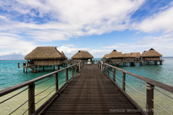 Path to Overwater Bungalows