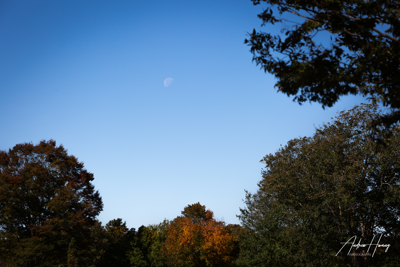 Daytime Moon Harkness Memorial State Par