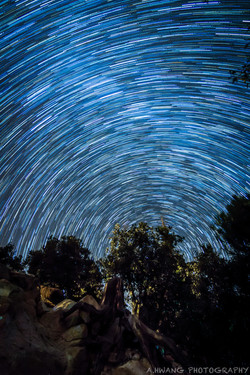 Rose Canyon Star Trails