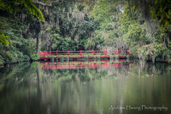 Audubon Swamp Bridge_4