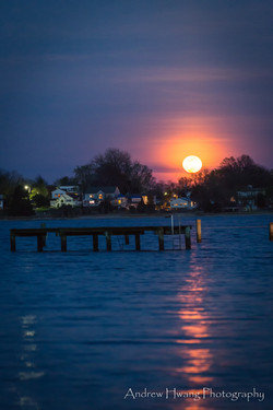 Selby on the Bay Pink Moon_2