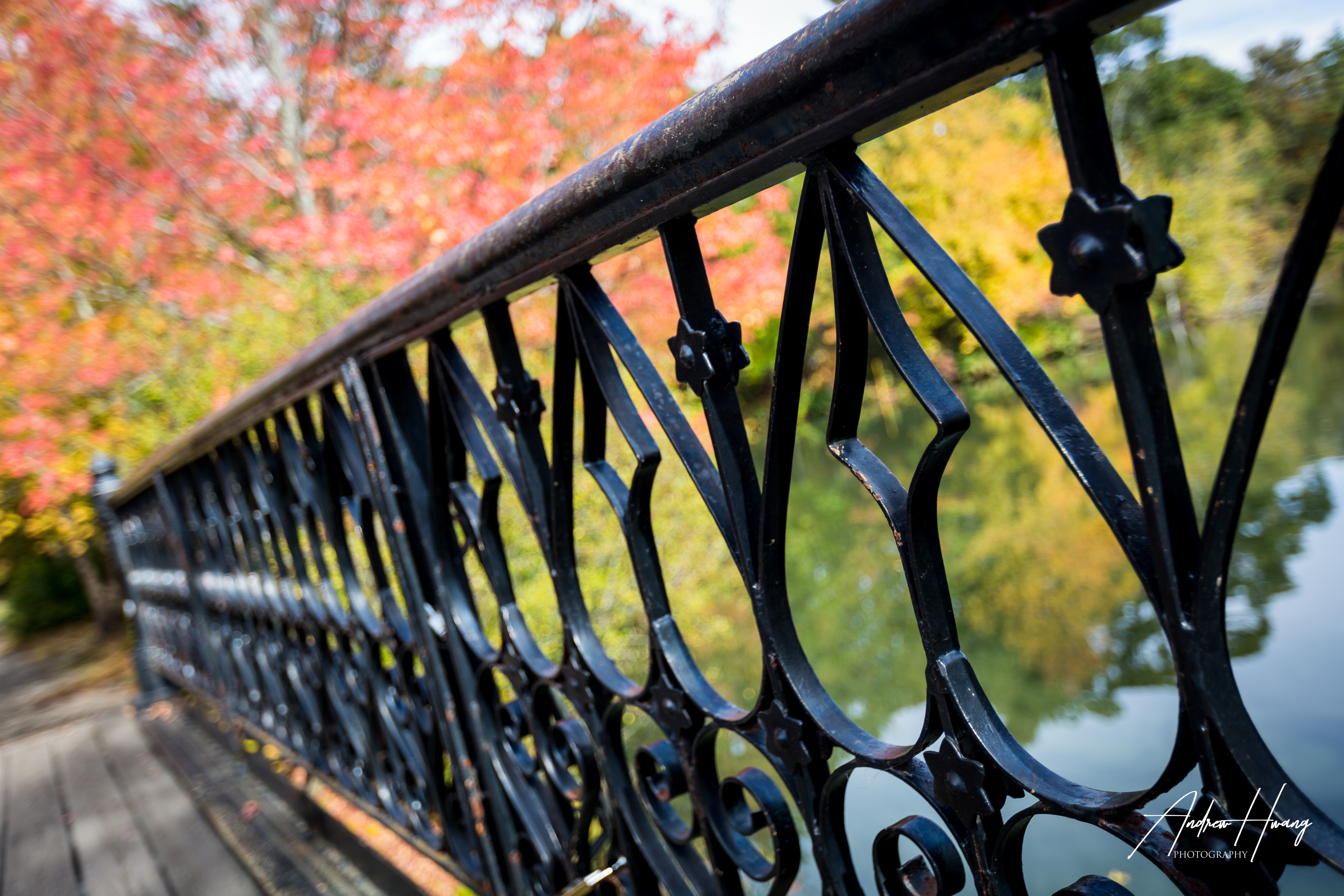 Roger Williams Park Bridge Railings