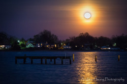 Selby on the Bay Pink Moon_3