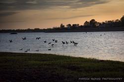 CT Waterfront Sunset