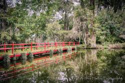 Audubon Swamp Bridge_3