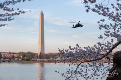 Washington Monument and Black Hawk