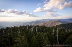 Clingmans Dome Smoky Mountains 4