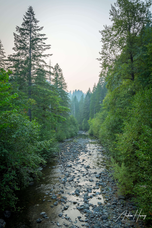 Mt Olympus Creek