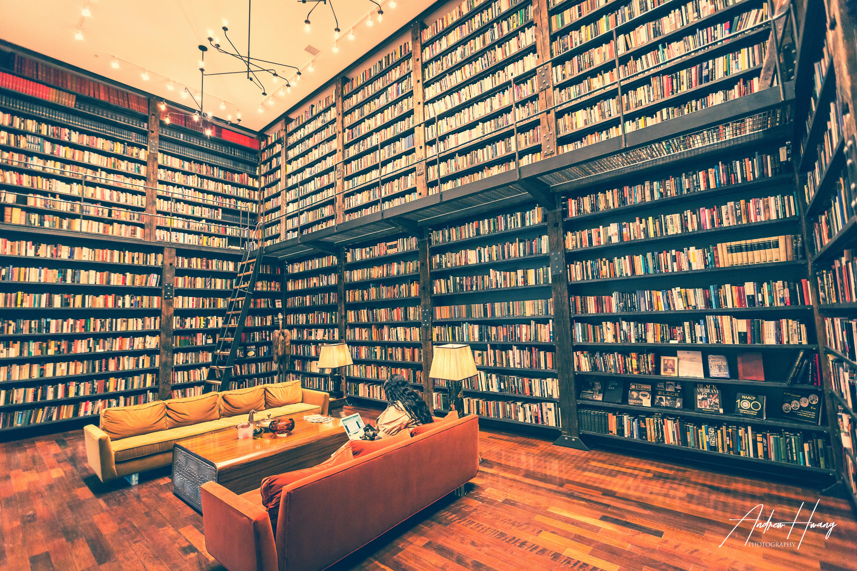 Stony Island Arts Bank Library