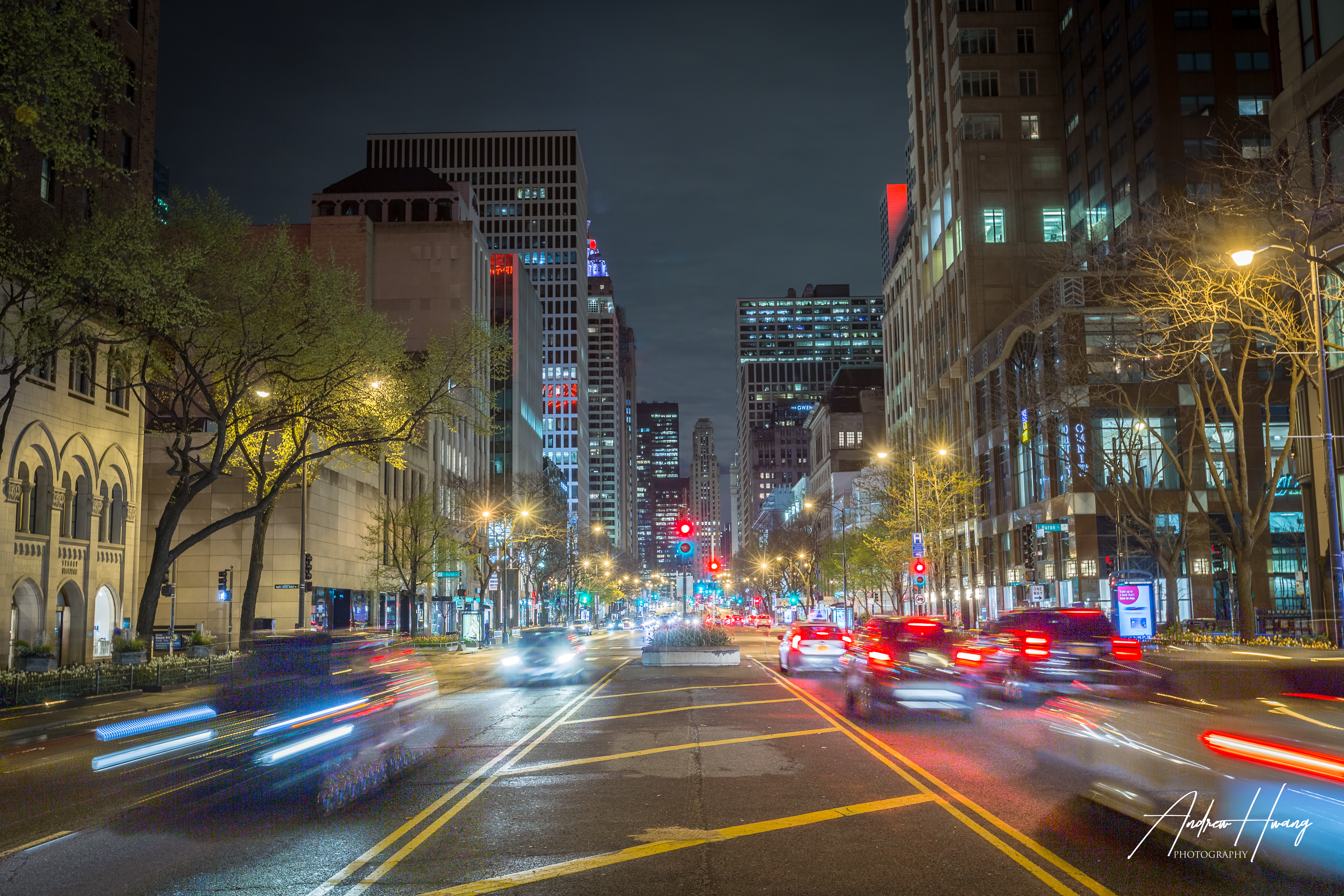 Magnificent Mile Chicago South