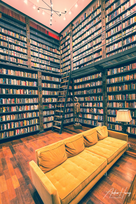 Stony Island Arts Bank Library 2