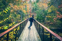 Hidden Valley Preserve Thoreau Bridge Ov