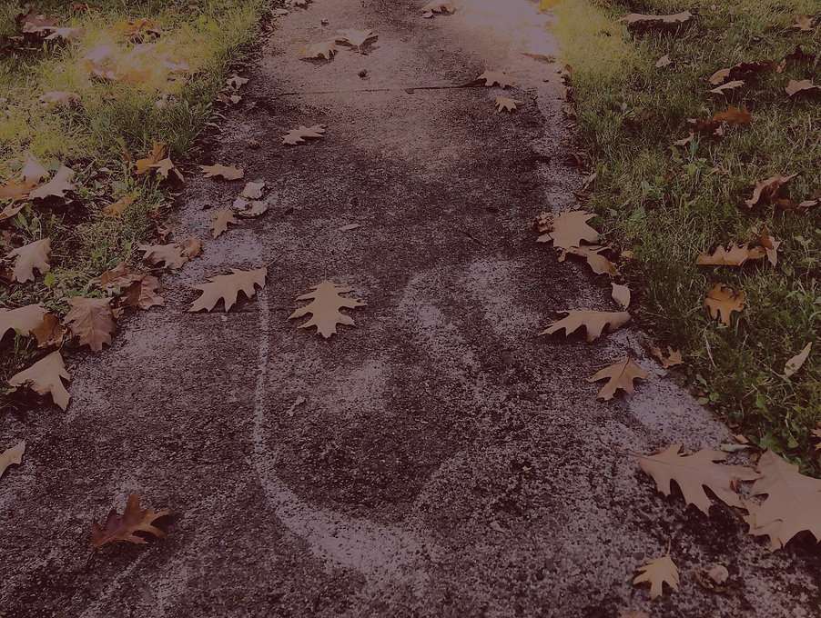 path_edited_edited_edited.jpg