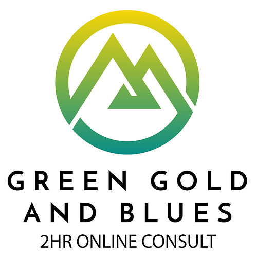 2 Hour Online Consult