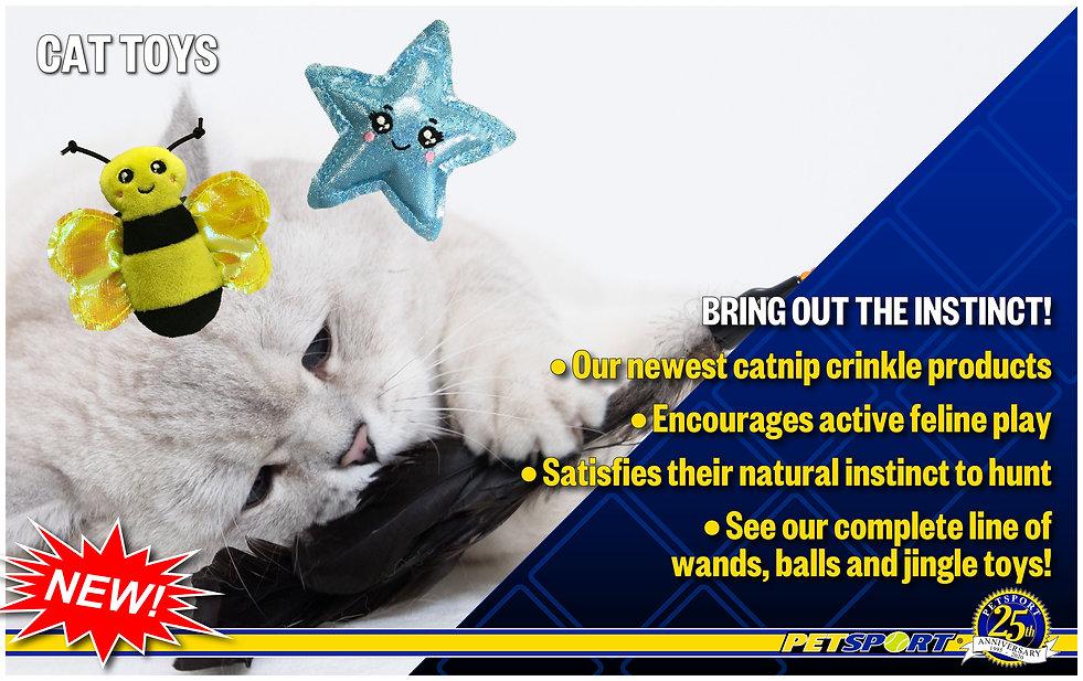 EC Cats-01.jpg