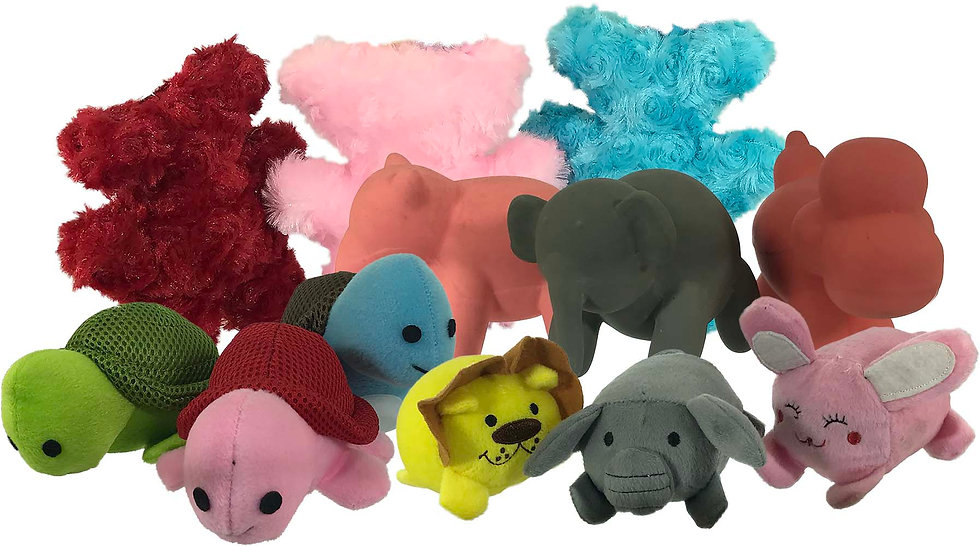 My Squeaks Pet Toys Assorted