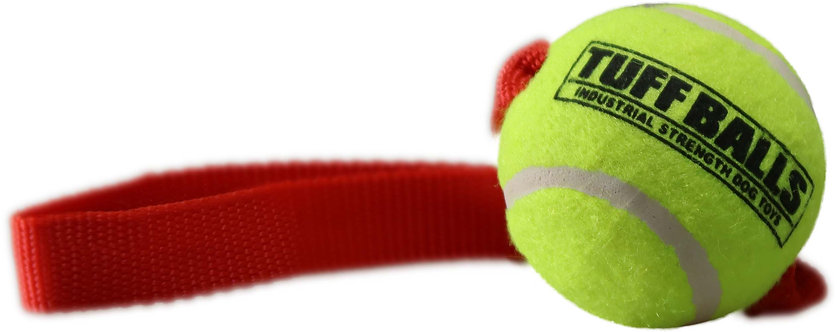 "Mini Fetch Me Fido 8"" Handle w 1.8"" Tuff Ball"
