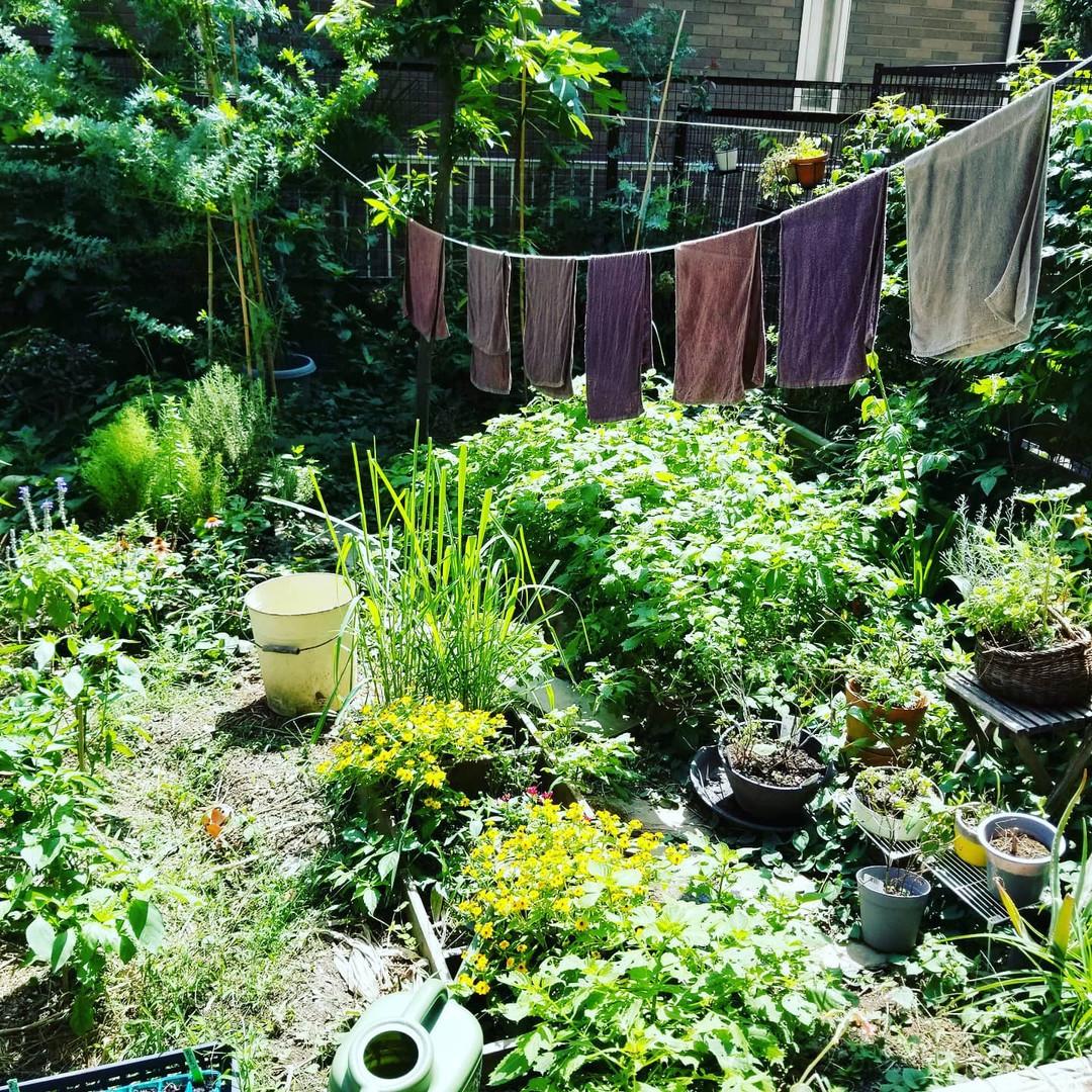 庭は癒やしの場所