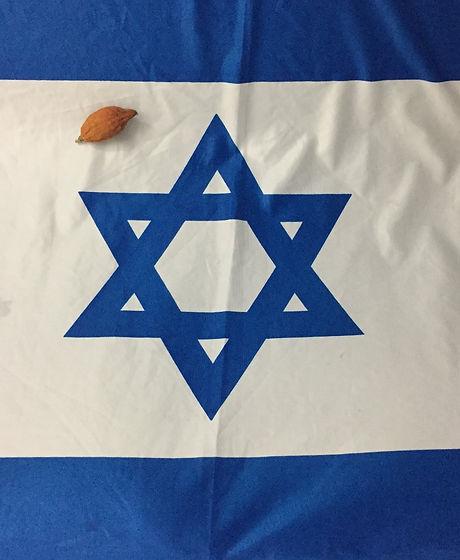 Israel Etrog