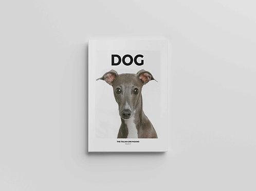 DOG #7 The Italian Greyhound