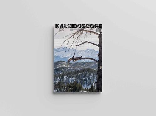 Kaleidoscope #37 Mathew Barney