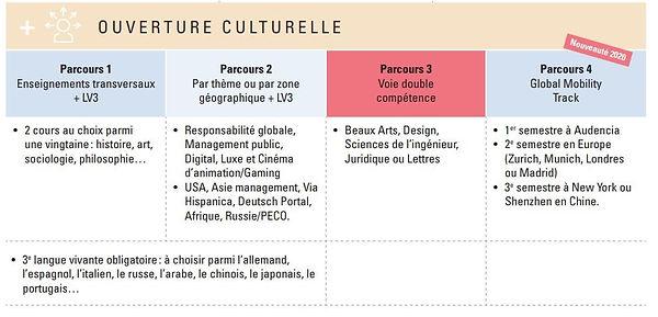 Audencia Culture