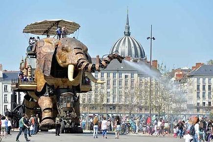 Audencia Elephant 2.jpg