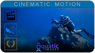 CINEMATIC MOTION COURSE