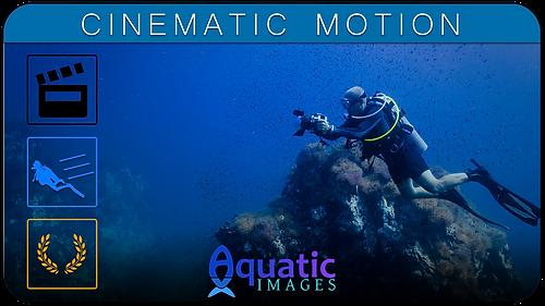 Cinematic Motion Course in Koh Tao - Thailand | Aquatic Images