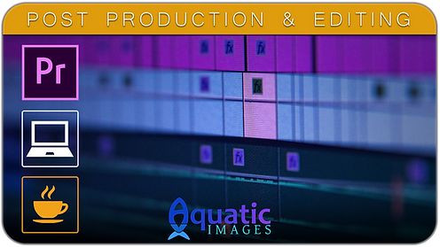 Post Production & Editing Course in Koh Tao - Thailand | Aquatic Images