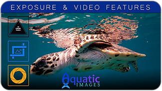 EXPOSURE & VIDEO FEATURES COURSE