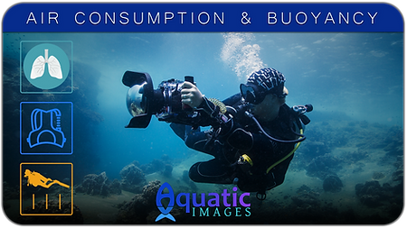Air Consumption & Bouyancy Course in Koh Tao - Thailand | Aquatic Images